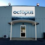 West Australian Octopus - Factory