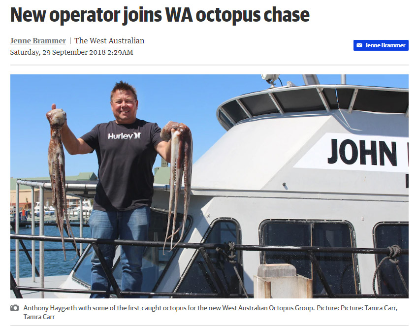News article clip - New Operator joins WA octopus chase