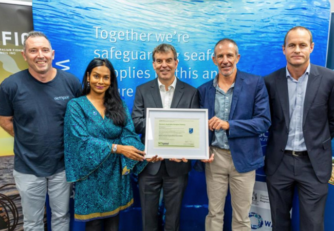 International recognition for WA's sustainable octopus fishery